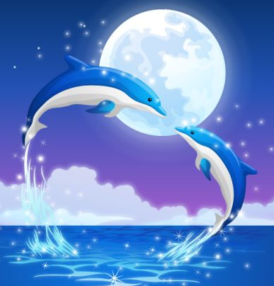 dolphins-vector